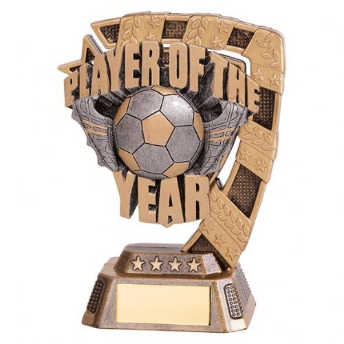 Euphoria Player of The Year Award 130mm